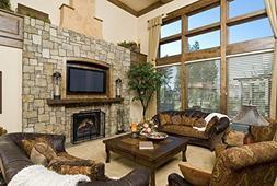 Dimplex North America, Ltd. Elec Fireplace Insert